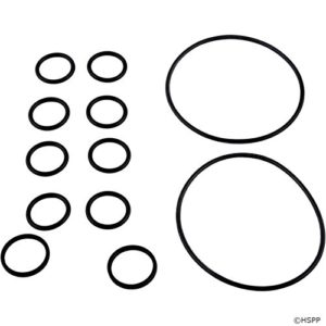 Zodiac R0552400 O-Ring Replacement Kit for Select Zodiac Never Lube Backwash Valve